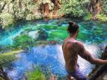 新西兰泉水超级清澈呈现蓝色