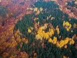 土耳其秋色渐浓 层林尽染风景如画